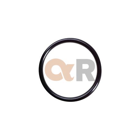 Orings Dbh 52010 - Pack Por 50 U